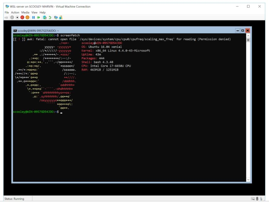 Windows Subsystem for Linux がWindows Serverでも利用可能に